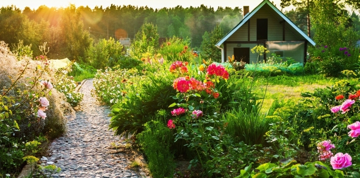 Country-house-with-flowers-wide-i